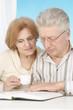 Lovely elderly couple resting at home