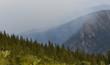 beautiful fog in mountains