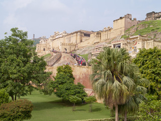 Rise of elephants to Amber Fort,  Rajasthan, India