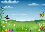 Fototapety Spring Landscape with Butterflies