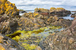 Ballintoy bay basalt rock in Northern Ireland
