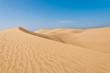 Fototapeten,wildnis,sanddünen,sanddünen,sand