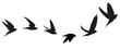 Vogelzug Vektor Silhouette - 45026448