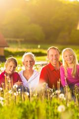 Glückliche Familie sitzt auf Sommer Wiese