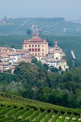 Il castello di Barolo (Cn) - Piemonte