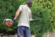jardinier taillant une haie  # 32 - 45035866