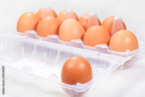 one chicken egg against several brown eggs