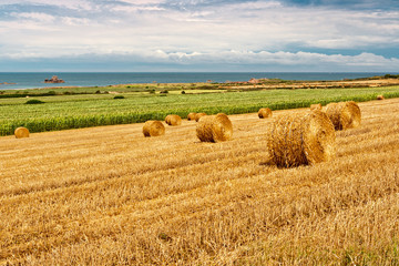 Straw Bales near the Sea in Normandy, France