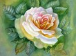 WATERCOLOR FLOWER ROSE