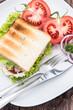 Tuna Sandwich on a plate