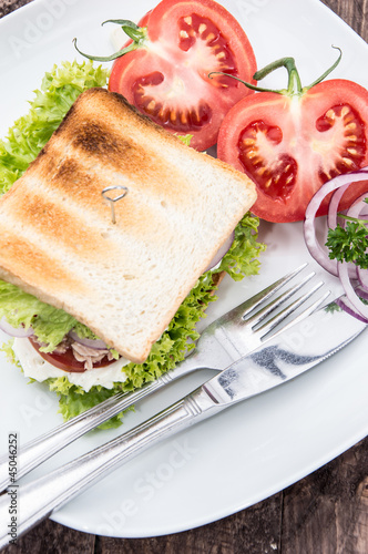 Tuna Sandwich on a plate