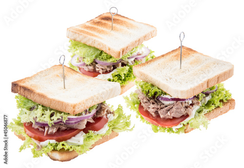 Group of Tuna Sandwiches on white