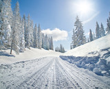 Fototapety Empty snow covered road in winter landscape