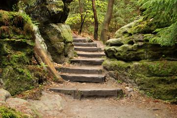 Wander Treppe