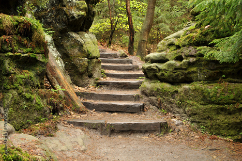 canvas print picture Wander Treppe