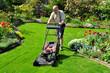 Senior mäht den Rasen im Garten - 45062043