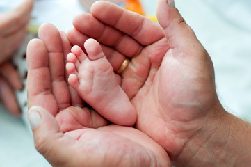 Leg of the newborn in the hands of the father