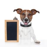 board  placeholder banner dog poster