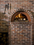 """USA, Utah, Orem, logs by brick fireplace"""