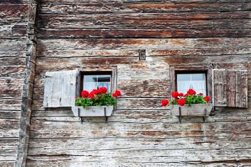 Blumen in Fensterbänken an Holzhaus