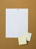 Blank adhesive notes and lined paper pinned to notice board