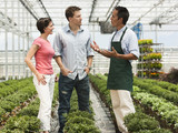 """USA, Utah, Salem, couple talking to gardener in plant nursery"""