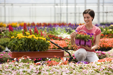 """USA, Utah, Salem, woman in plant nursery"""