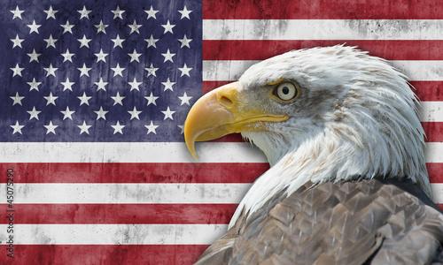 Bandera de los Estados Unidos de América con el águila calva