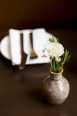 """Orem, Utah, USA, little vase with white flower"""