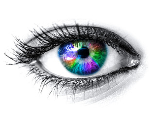 Colorful woman eye macro shot