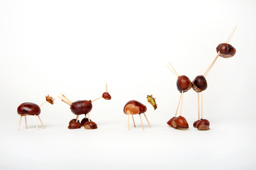 Chestnut Animals 1