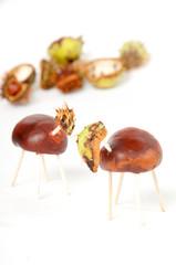 ChestnutDeer