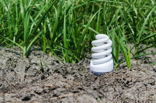concept light bulb between drought land and green grass