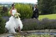 jeunes mariés souriants au bord d'un bassin