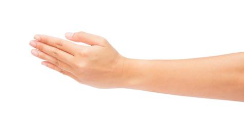 Beautiful woman hands