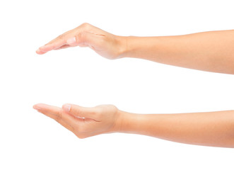 Two Beautiful woman hands isolated