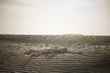 """""""USA, Utah, Little Sahara, human skeleton on desert"""""""