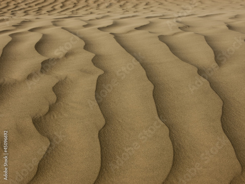"""USA, Utah, Little Sahara, sand dunes, full frame"""