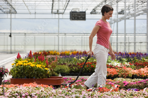 """USA, Utah, Salem, mid adult woman choosing plants in greenhouse"""