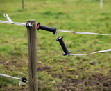 Electric fence on the farm