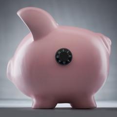 Studio shot of piggy bank with combination lock