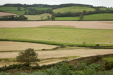 Devon Landscape View