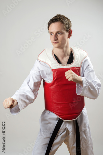 Taekwon-Do fighter