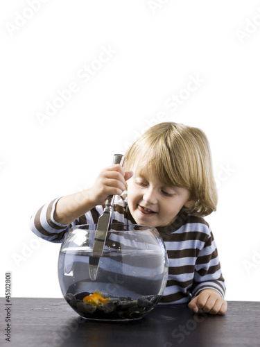 """USA, Utah, Provo, Boy (2-3) stabbing goldfish with knife"""
