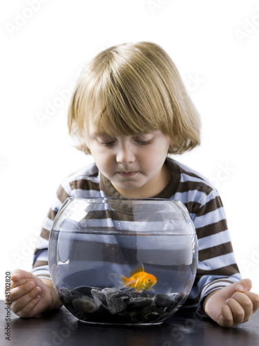 """USA, Utah, Provo, Boy (2-3) watching goldfish in bowl"""