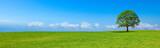 Paysage de campagne panoramique B
