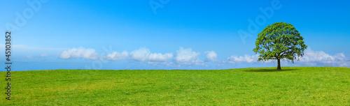 Leinwanddruck Bild Paysage de campagne panoramique B
