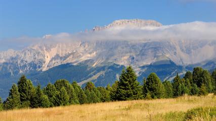 Dolomiti  - Monte Latemar dal passo di Lavazè