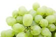 ripe juicy green grapes