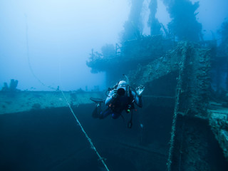 Grenada, Caribbean Sea, Scuba diver next to shipwreck